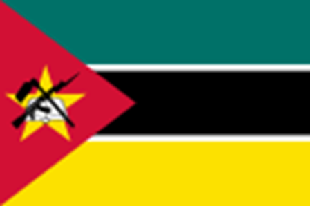 Picture for category Mozambique